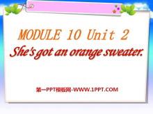 《She's got an orange sweater》PPT课件2