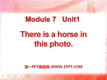 《There is a horse in this photo》PPT课件3