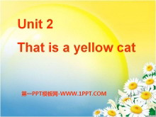 《This is a yellow cat》PPT课件