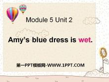 《Amy's blue dress is wet》PPT课件2