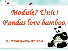 《Pandas love bamboo》PPT课件