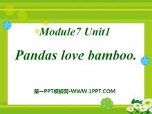 《Pandas love bamboo》PPT课件4