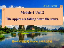 《The apples are falling down the stairs》PPT�n件4