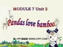 《Pandas love bamboo》PPT课件5