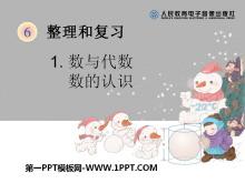 《数的认识》数与代数PPT课件2