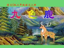 《九色鹿》PPT课件11