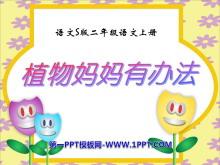 《植物妈妈有办法》PPT课件8