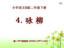 《咏柳》PPT课件14