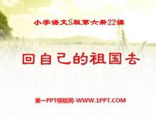 《回自己的祖国去》PPT课件5
