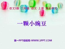 《一颗小豌豆》PPT课件6