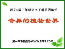 《奇异的植物世界》PPT课件2