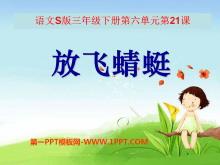 《放飞蜻蜓》PPT课件6