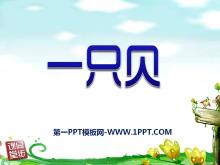 《一只贝》PPT课件5