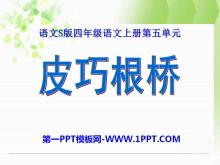 《皮巧根桥》PPT课件5
