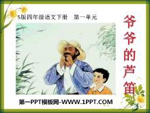 《爷爷的芦笛》PPT课件2