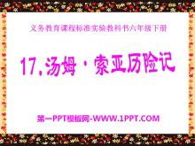 《汤姆·索亚历险记》PPT课件7