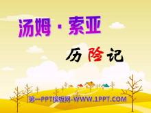《汤姆·索亚历险记》PPT课件9