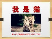 《我是猫》PPT课件2