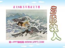 《海豚救人》PPT课件2