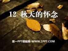 《秋天的怀念》PPT课件8