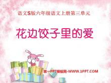 《花边饺子里的爱》PPT课件2