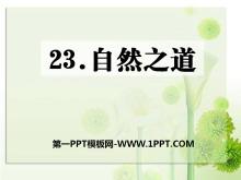 《自然之道》PPT课件10