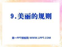 《美丽的规则》PPT课件2