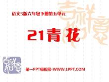 《青花》PPT课件2