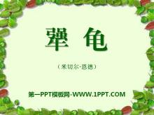 《犟龟》PPT课件3