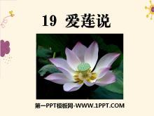 《爱莲说》PPT课件8