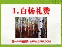 《白�疃Y�》PPT�n件11