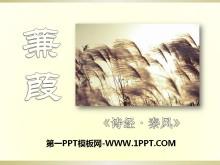 《蒹葭》PPT课件8