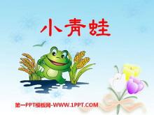 《小青蛙》PPT课件2