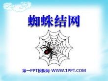 《蜘蛛织网》PPT课件3