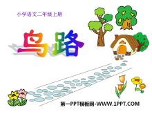 《鸟路》PPT课件