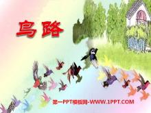 《鸟路》PPT课件2