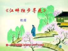 《江畔独步寻花》PPT课件9