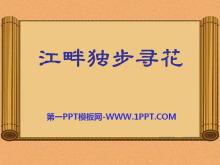 《江畔独步寻花》PPT课件10