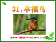 《幸福鸟》PPT课件5