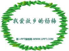 《我爱故乡的杨梅》PPT课件