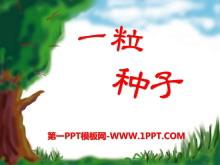 《一粒种子》PPT课件5