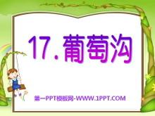 《葡萄沟》PPT课件11