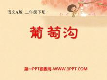 《葡萄沟》PPT课件12