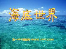 《海底世界》PPT课件6