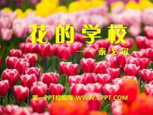 《花的学校》PPT课件3