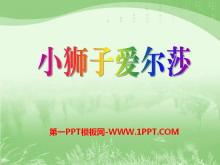 《小狮子爱尔莎》PPT课件7