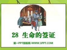 《生命的签证》PPT课件