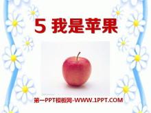 《我是苹果》PPT课件