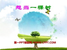 《想当一棵树》PPT课件2