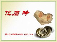 《化石吟》PPT课件6